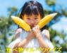 食べ物マルバツクイズ。小学生向け。秋野菜&お米クイズ10問!